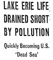 Lake Erie Life Drained Short By Pollution